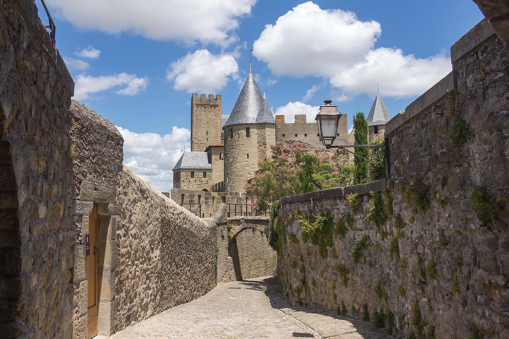 An avenue in the beautiful walled city of Carcassonne